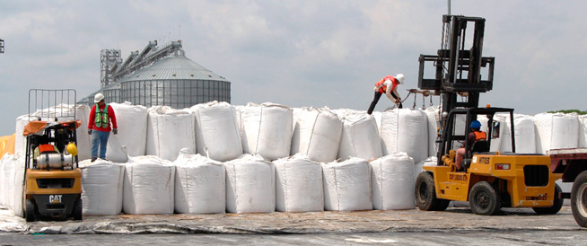 Puerto Chiapas is considered again the best option in sugar exports to the US